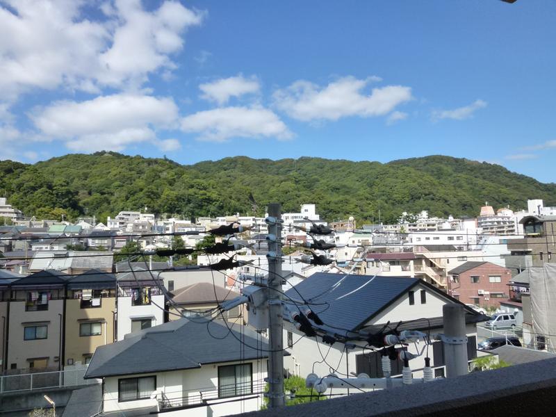 物件番号: 1025800150 アンビエント中山手  神戸市中央区中山手通4丁目 2LDK マンション 画像16