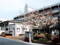 物件番号: 1025821401 ブロスコート六甲Ⅱ  神戸市灘区桜口町2丁目 1K マンション 画像21