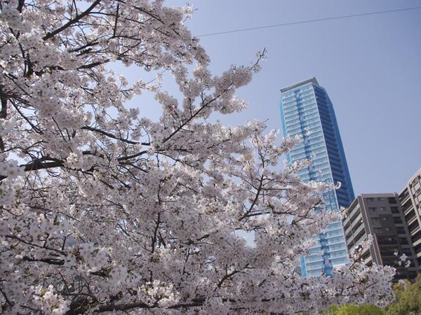 物件番号: 1025881418 ジークレフ新神戸タワー  神戸市中央区熊内町7丁目 1LDK マンション 画像2
