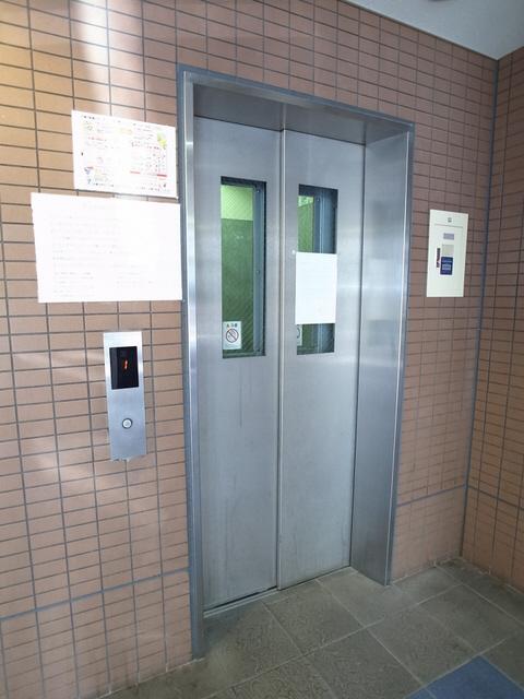 物件番号: 1025866850  神戸市中央区下山手通4丁目 1DK マンション 画像12