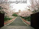物件番号: 1025844730 ルネ須磨  神戸市須磨区妙法寺字蓮池 4LDK マンション 画像21
