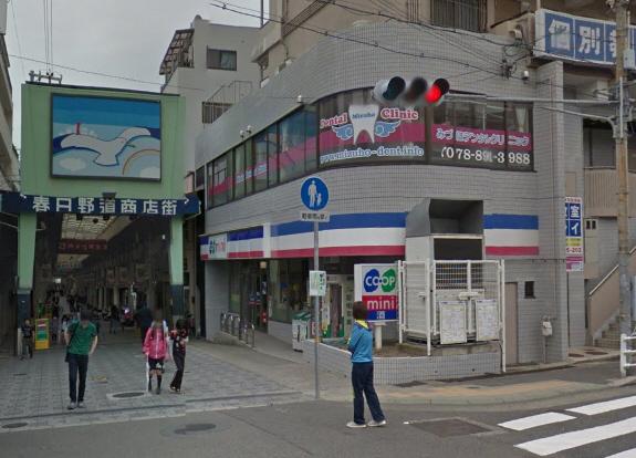 物件番号: 1025869015 アルカディア  神戸市中央区東雲通1丁目 1LDK マンション 画像25