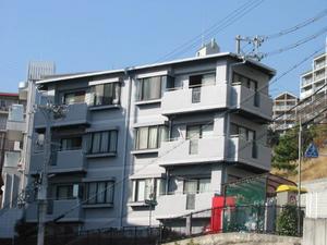 物件番号: 1025883401 サンハイツ新田  神戸市灘区六甲台町 1LDK マンション 外観画像